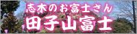 志木のお富士さん 田子山富士