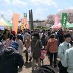 photo_029