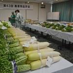 2015志木市民まつり-06-003