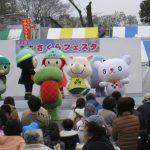 20190330_sakura_24