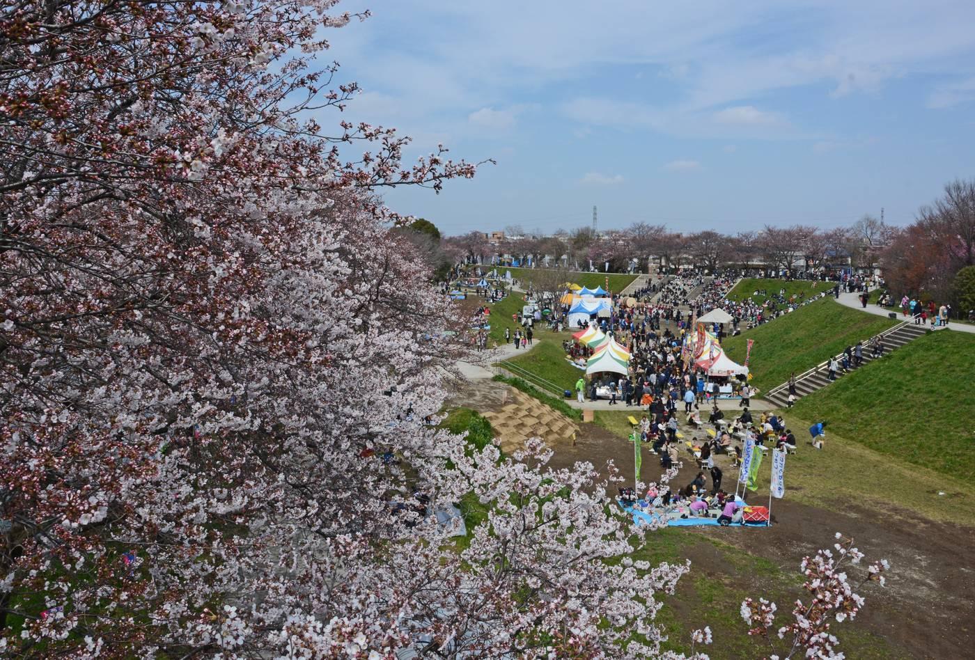 2017年4月 いろは親水公園まつりのイメージ